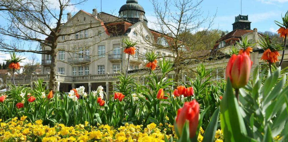 Hotel Badehof 43893