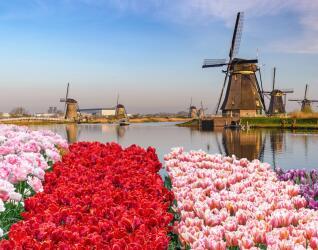 Städtereisen Rotterdam