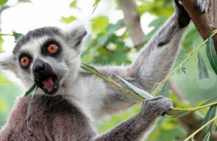 Ein tierischer Familienspaß im viertältesten Zoo Deutschlands