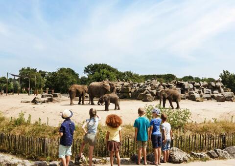 Van der Valk Hotel Vught + Safaripark Beekse Bergen