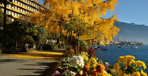 Royal Plaza Montreux-0