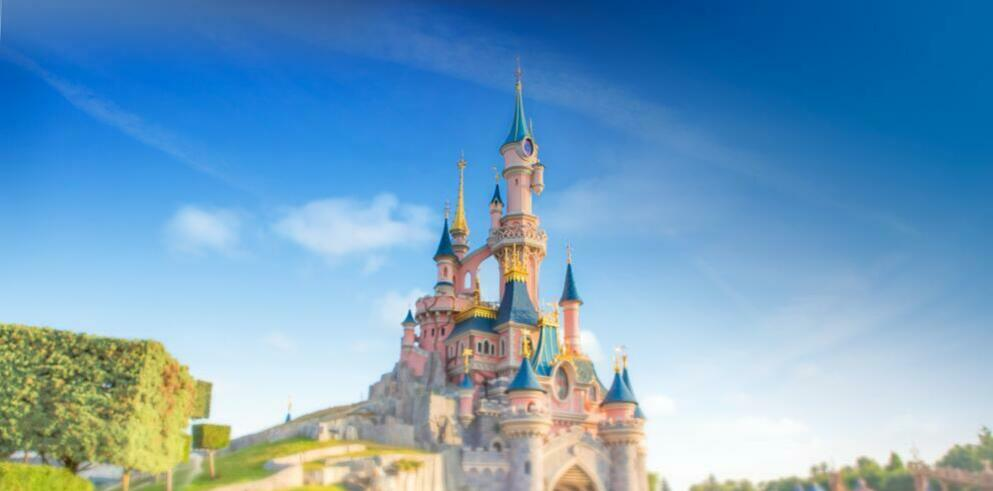 Disneyland® Family & Friends Special 78320