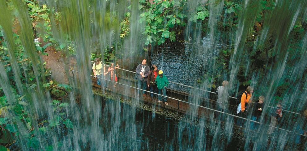 Königlicher Burgers' Zoo 97377